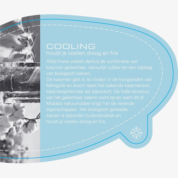 PSB cooling inlegzool 1