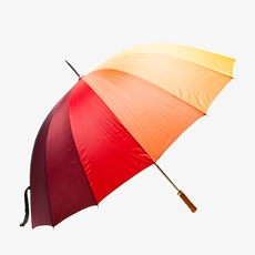 Grote Regenboog paraplu