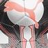 Puma Evospeed voetbal 2